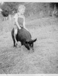 Robert on a pig